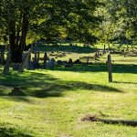 Rectory Lane Cemetery Project / A uniquely inspiring space for the arts