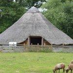 Celtic Harmony / Celtic Harmony, Iron Age Settlement