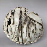 Kate Windibank | Ceramic Artist / Kate Windibank