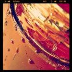 Honey .02