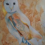 Kevin the Barnowl