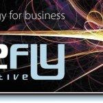 Firefly Creative / Graphic Design / Marketing / Websites